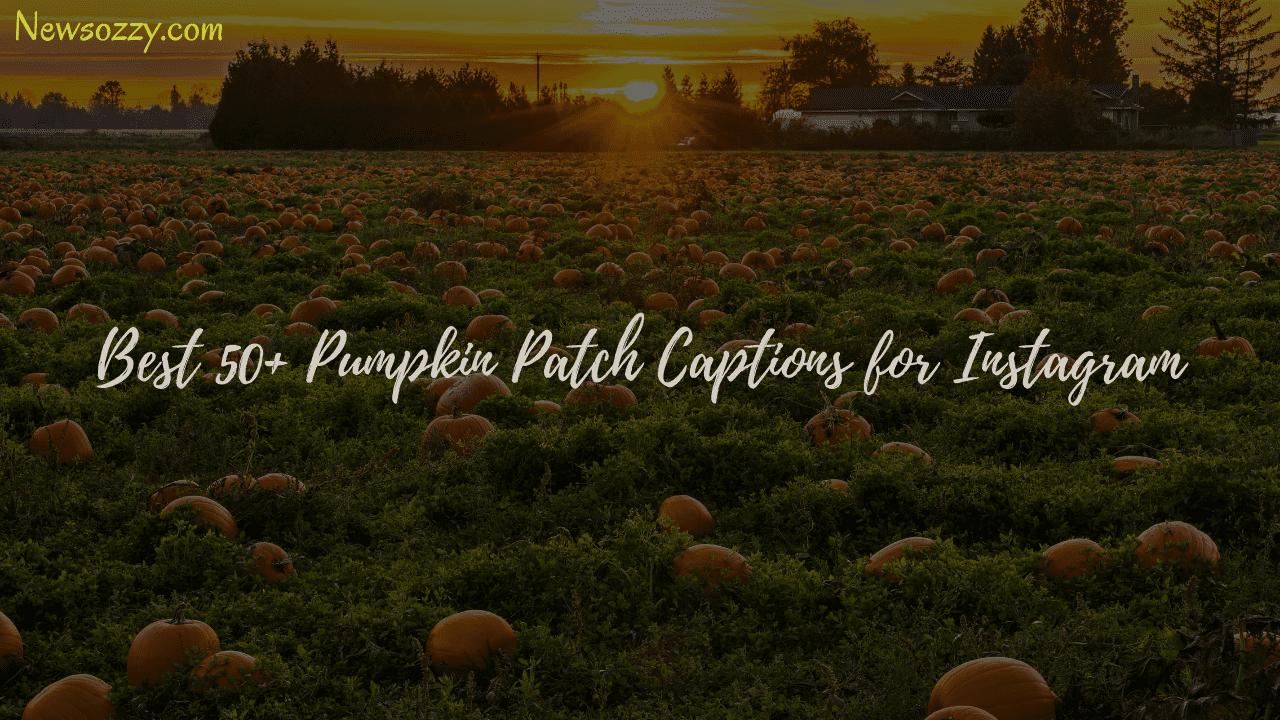 best pumpkin patch captions