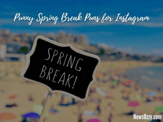 punny spring break puns for insta