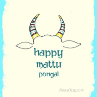 happy mattu Pongal dp for whatsapp