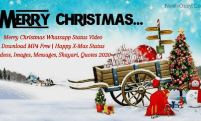 merry Christmas WhatsApp status video download free mp4, images, quotes, dp's