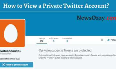 How to View a Private Twitter Account