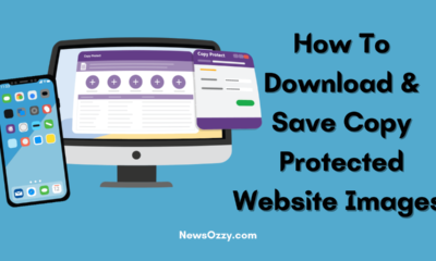 Save Copy Protected Website Images